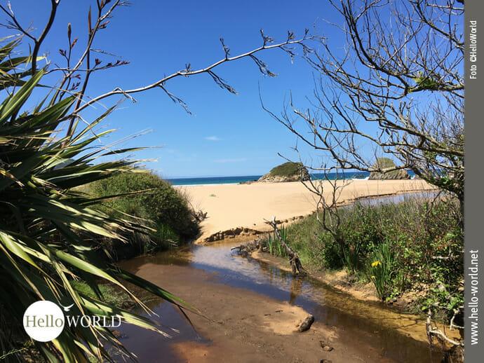 Idyllischer Blick auf den Playa San Román