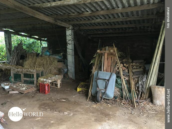 Landleben an der spanischen Nordküste