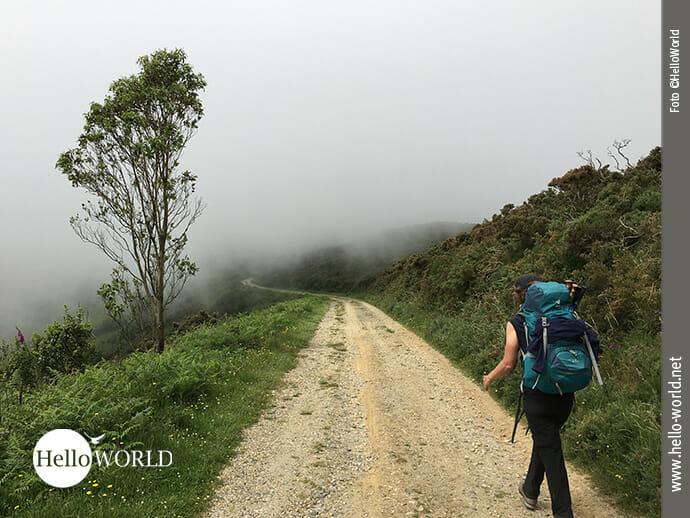 Aufwärts geht's Richtung Cedeira
