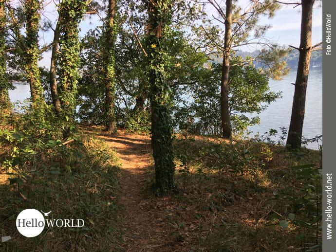 Wegebeispiel Richtung A Coruna