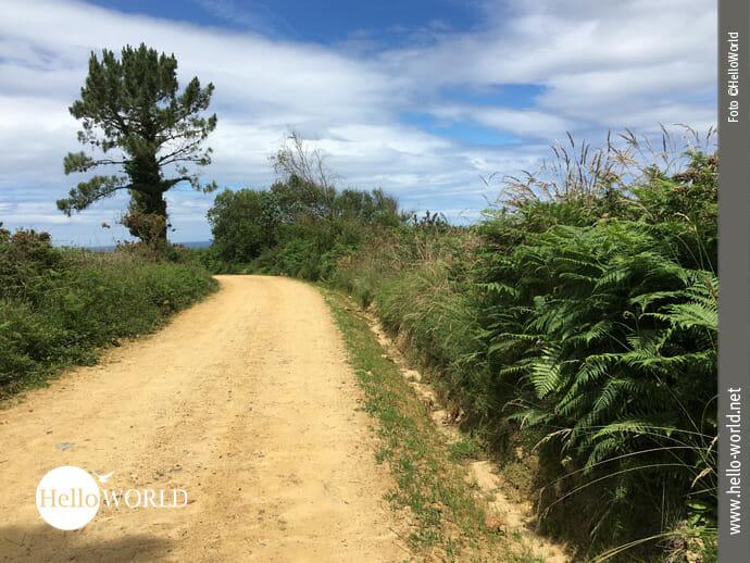 Weiche, sandige Wege Richtung Tapia de Casariego