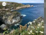Für Naturliebhaber perfekt: die spanische Nordküste
