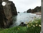 Blühende Landschaft, karge Felsen: Spaniens Nordküste