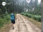 Auf Forstwirtschaftswegen an der spanischen Nordküste