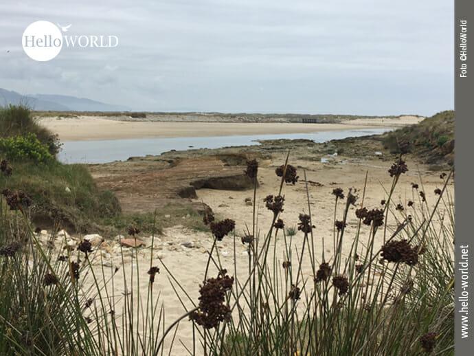 Naturschutzgebiet Lagoa de Baldaio