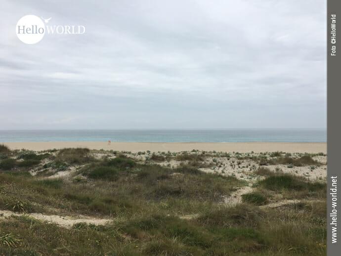 Dünenlandschaft an der spanischen Nordküste