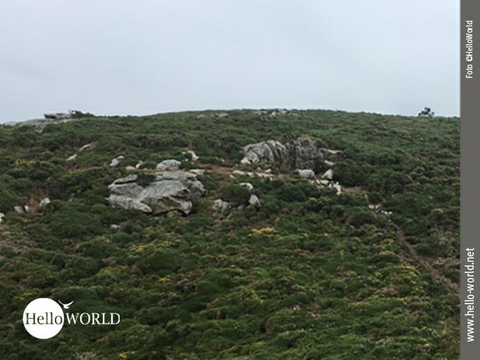Beispiel eines Wanderpfades an der Costa da Morte