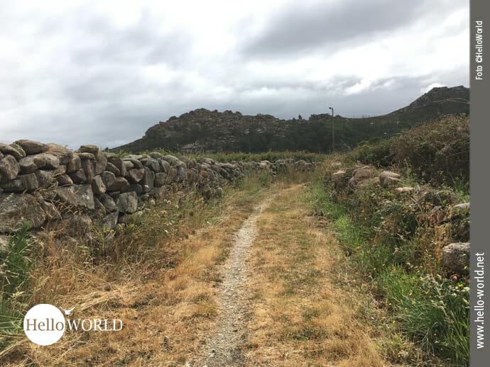 Feldweg bei Arou an der Costa da Morte