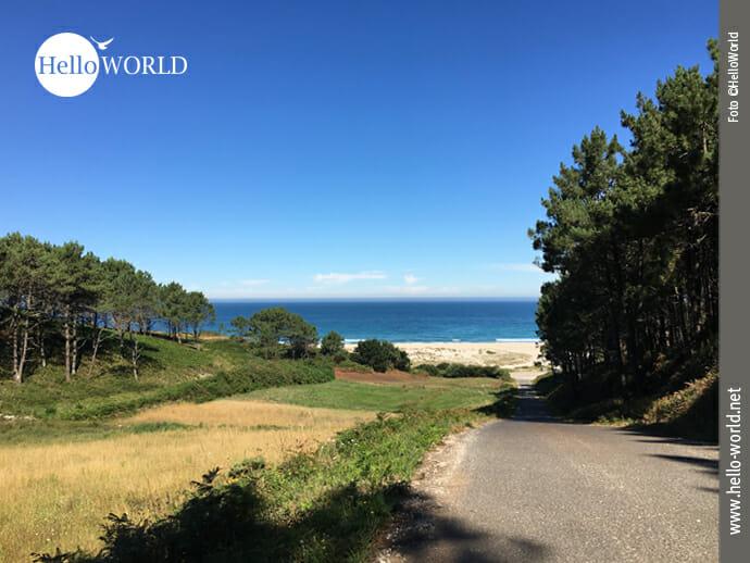 Das Bild zeigt eine Asphaltstraße an der spanischen Nordküste auf dem Weg nach Finisterre, die direkt an den Praia do Rostro führt, links sieht man ein Feld und Bäume, dahinter den Atlantik.