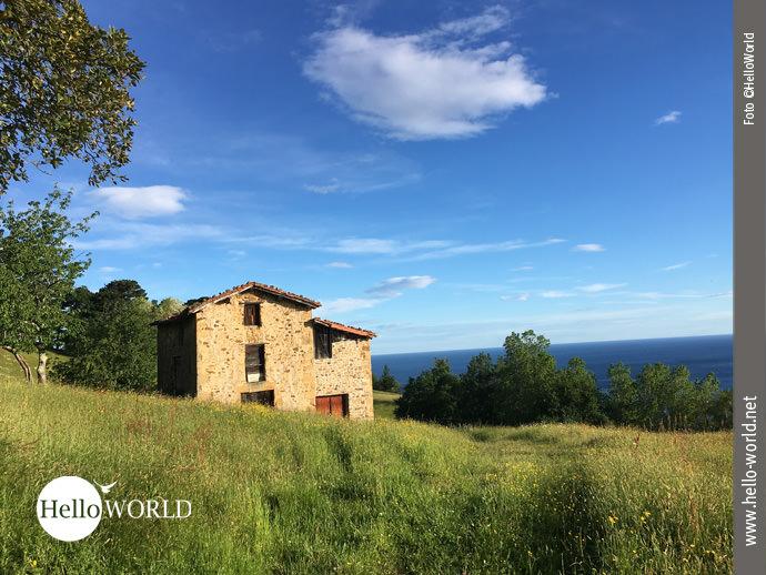 Quer über Wiesen an der spanischen Nordküste