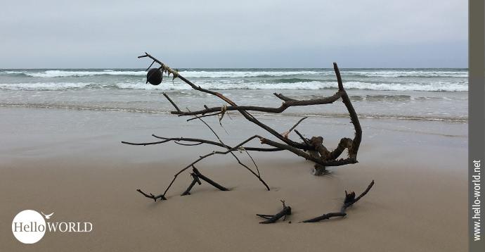 Die raue Atmosphäre der spanischen Nordküste wird in diesem Bild deutlich: ein Zweig im Sand, daran ein Ballon, der im Wind weht, im Hintergrund der Atlantik.