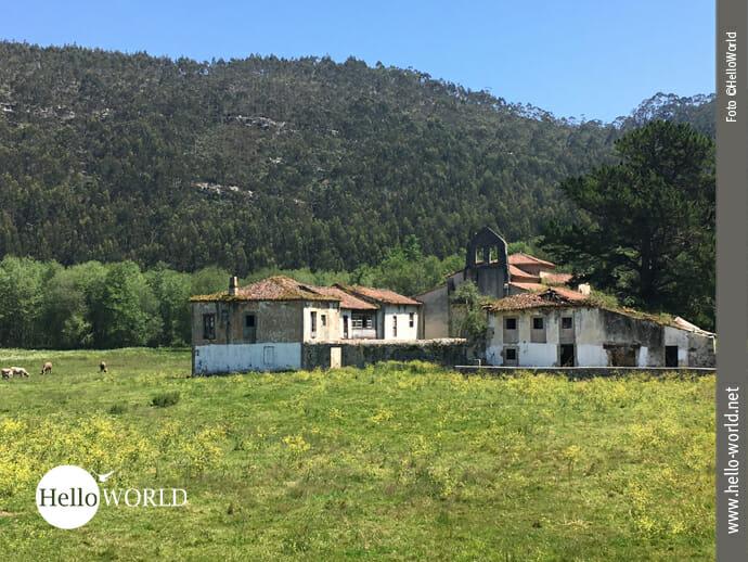 Dieses alte Monasterio San Antolin de Bedon steht inmitten einer ländlich geprägten Gegend auf dem Camino del Norte Richtung Ribadesella.