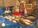 Fischstand auf einem südamerikanischen Markt