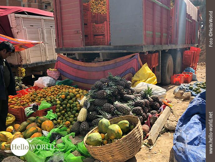 Lastwagenweise gelangt manch Ernte auf die Märkte.