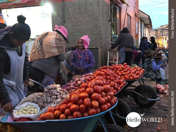 Aus eigenem Anbau: Tomaten