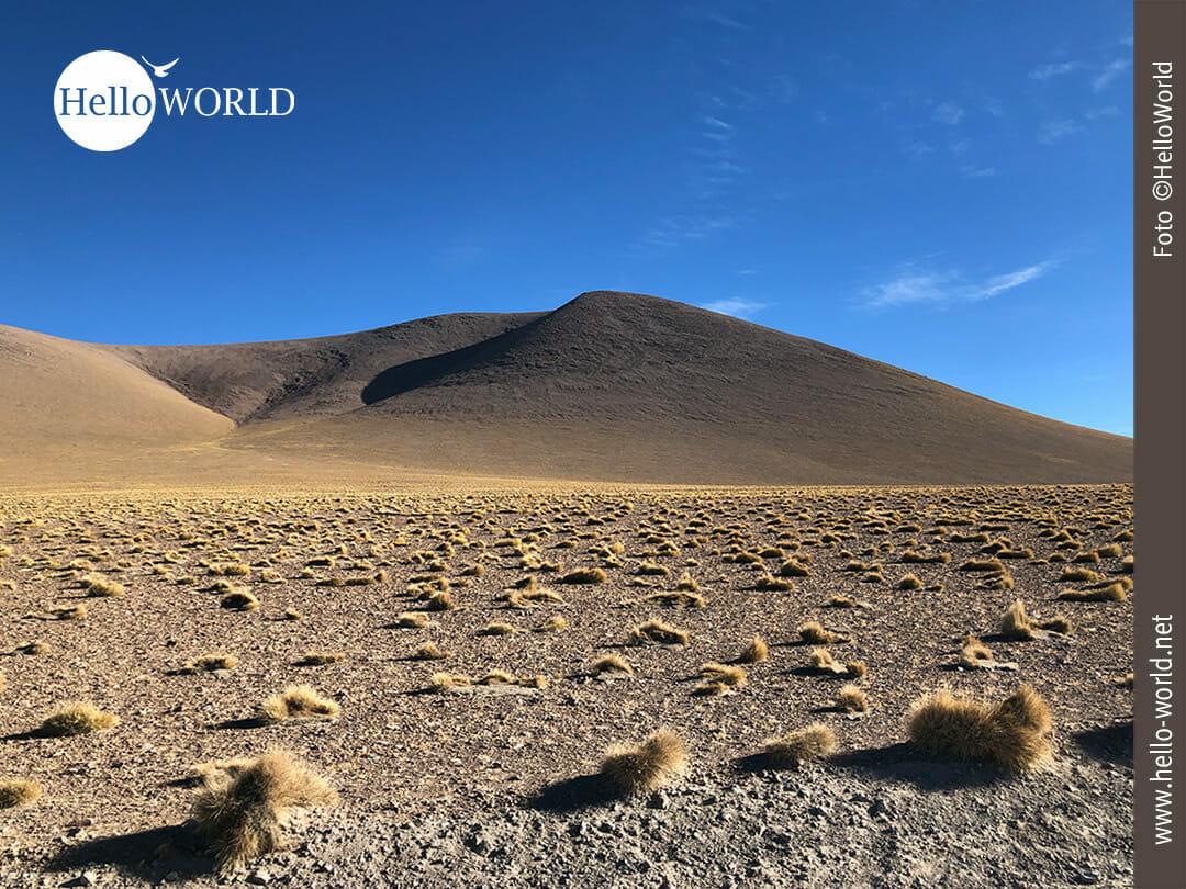 Wüstenähnliche Landschaft in Bolivien