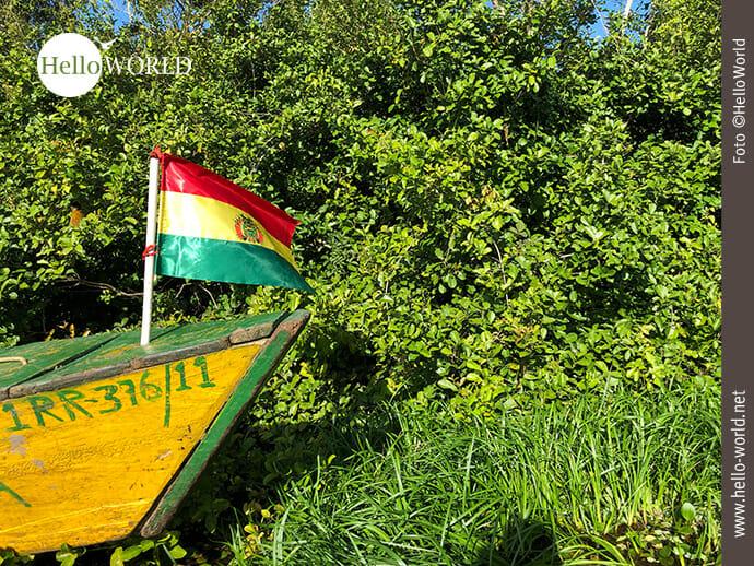 Das Bild entstand in der Pampas Boliviens und zeigt ein gelbes Boot mit Landesflagge vor grünem Gebüsch.