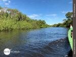 Auf Wasserwegen durch die Pampas in Bolivien