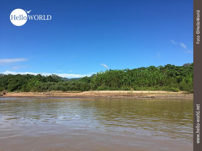 Flussufer des Rio Beni in Bolivien