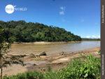 Aussicht am Rio Beni in Bolivien