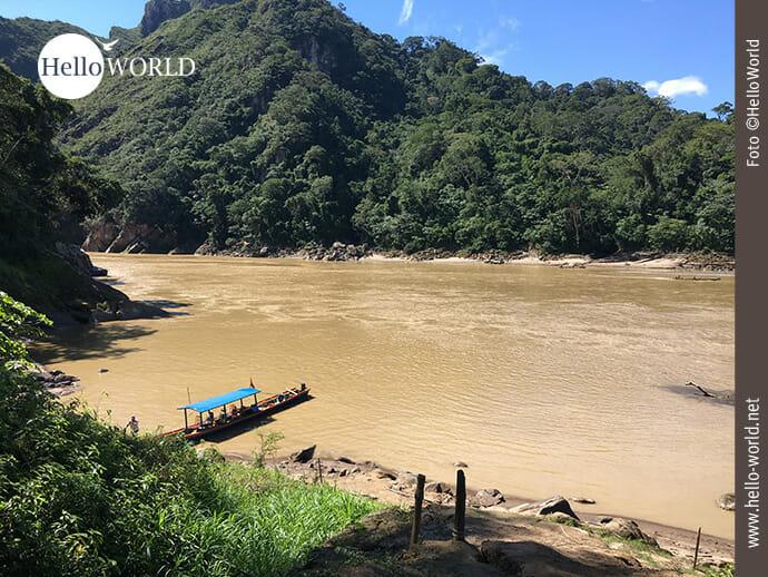 Zwischenstopp im bolivianischen Regenwald