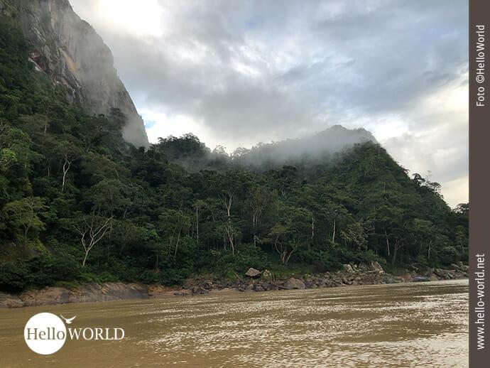 Nebelschwaden auf dem Weg in den Regenwald