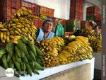 """Der """"Bananensektor"""" im Mercado Central"""