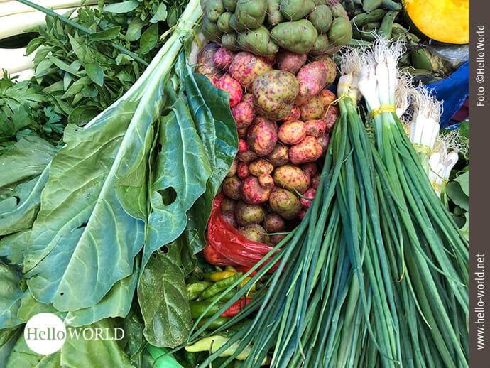 Über 400 Kartoffelsorten werden in Bolivien kultiviert