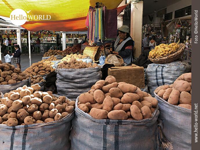 2.000 Jahre alt: der Kartoffelanbau in Bolivien