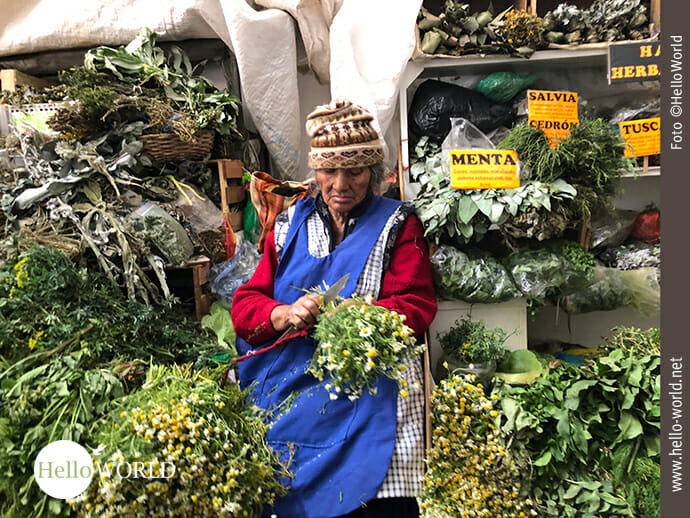 Täglich frisch vom Feld in den Markt: Kamille