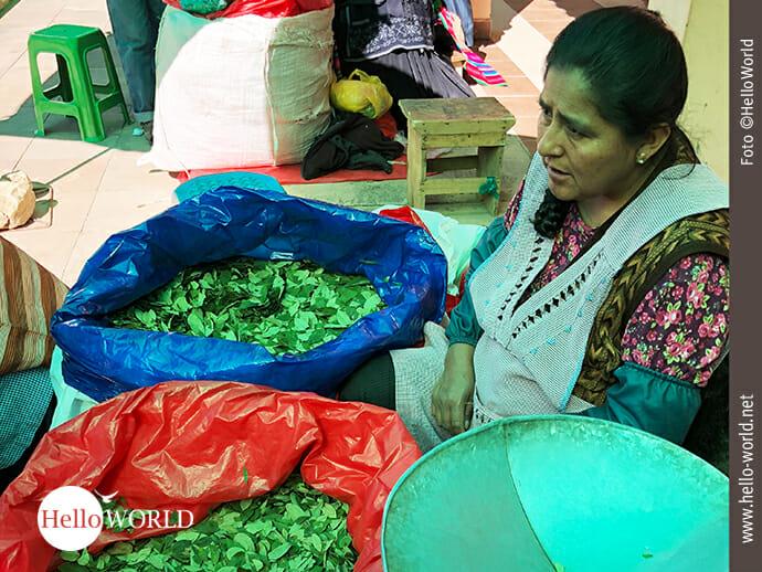 Das Bild aus Südamerika zeigt eine Marktfrau in Tarabuco, Bolivien, vor zwei großen Säcken voller Coca-Blätter sitzend.