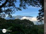 Traumhafte Aussichten in den Yungas