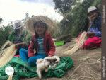 Heimarbeit im Familienkreis: Panamahut-Weberinnen