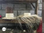 Rohling eines Panamahutes