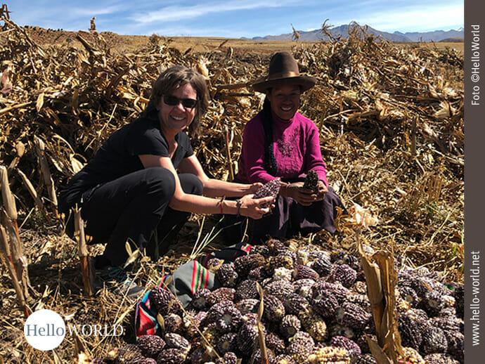 Dieses Bild wurde im Valle Sagrado, Peru, auf einem Maisfeld aufgenommen und zeigt Andrea mit einer Indigena vor einem Haufen lilafarbenen Mais sitzen.