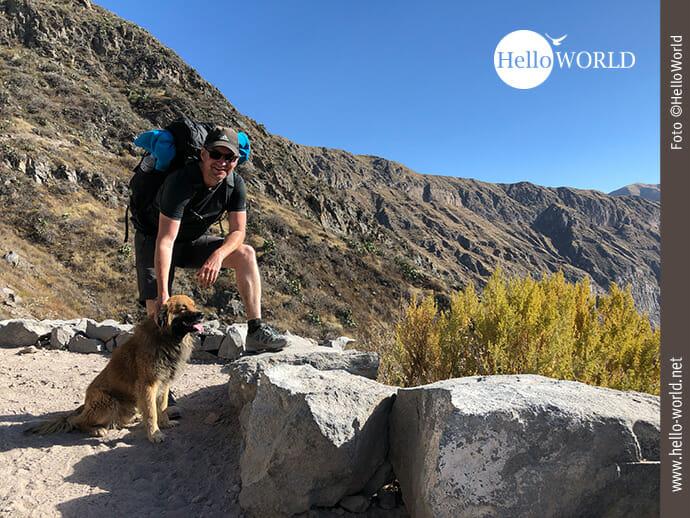 Dieses Bild wurde bei einer Wanderung im Colca Canyon, Peru, aufgenommen und zeigt Nico auf einem Weg mit einem Hund, der vor ihm sitzt