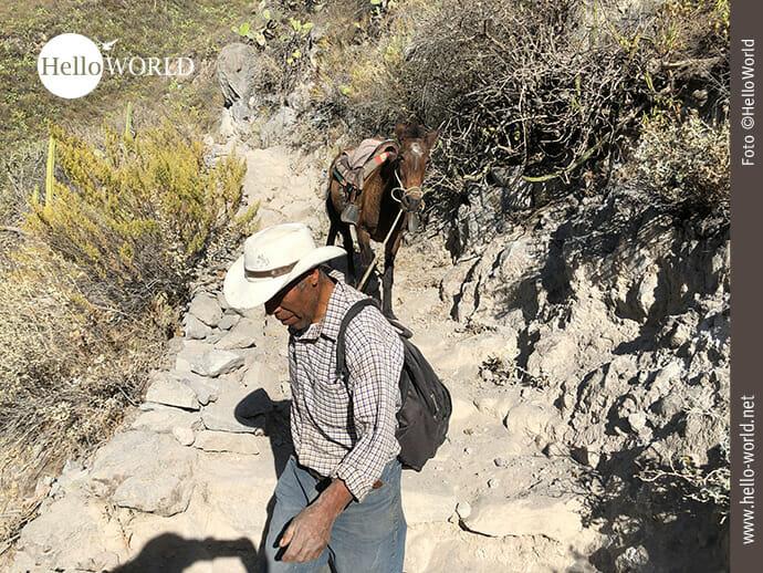 Mit dem Pferd durch den Colca Canyon