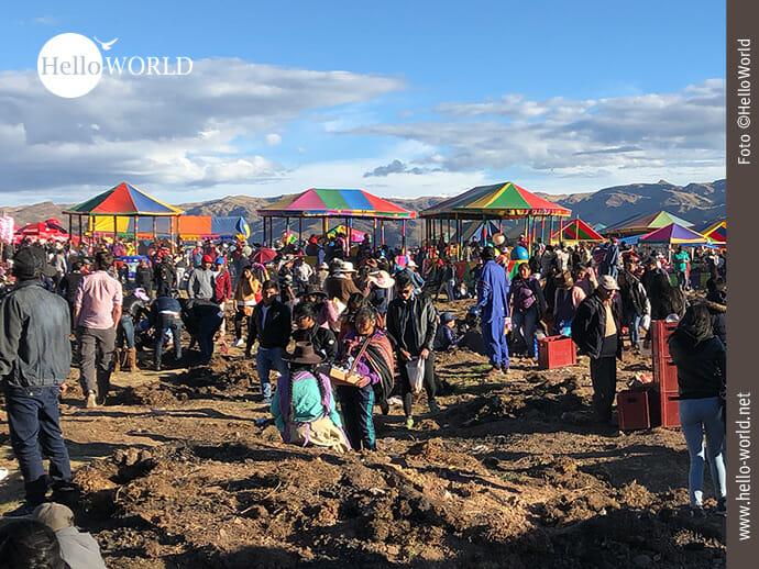 Dieses Bild aus Cusco, Peru, zeigt Menschen auf einem großen Open-Air-Festival, im Hintergrund bunte Schirme.