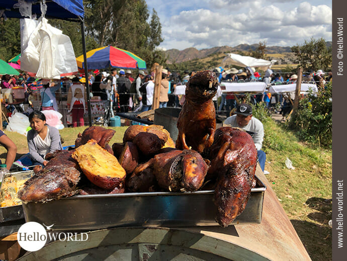 Gut gebraten: Cuy in Peru