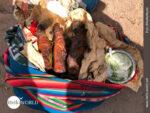 Cuy - das traditionelle Fleischgericht in Peru
