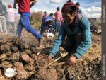 Feuer machen für die typisch peruanischen Papas