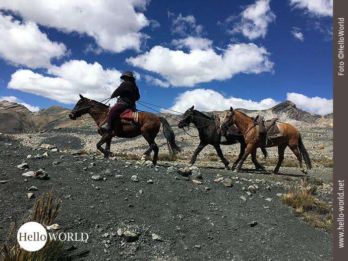 Dieses Bild in der Nähe des Pastoruri Gletschers in Peru zeigt einen Mann auf einem Pferd reitend und zwei Pferde hinter sich herziehend.