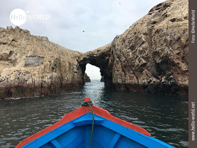Ein Reich für Fische und Vögel: Pazifikküste vor Paracas