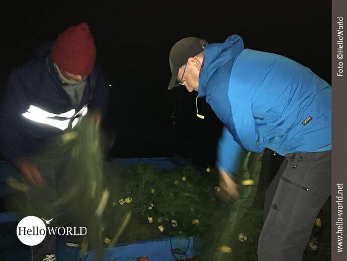 Vorbereitung: Netze richten bei Nacht und Nebel