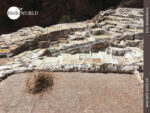 Aufwändig: Salzernte bei den Salinas de Maras in Peru