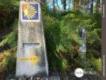 Wegzeichen der Pilgerroute nach Santiago de Compostela