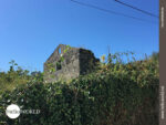 Charme des Vergänglichen auf dem Camino Portugues